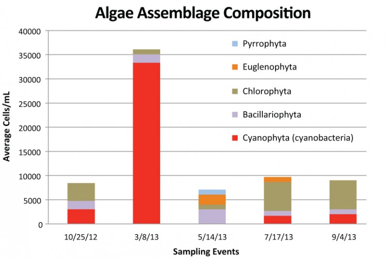 Figure 5:  Algae assemblage composition at different sampling events in Laguna Niguel Lake.  Values are averages from the same three sampling locations as the other water quality parameters.