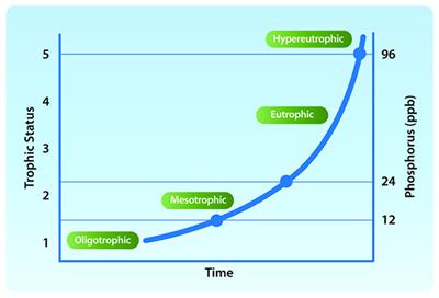 A chart displaying trophic status (e.g. oligotrophic, mesotrophic, eutrophic, etc.) alongside phosphorus levels in parts per billion.