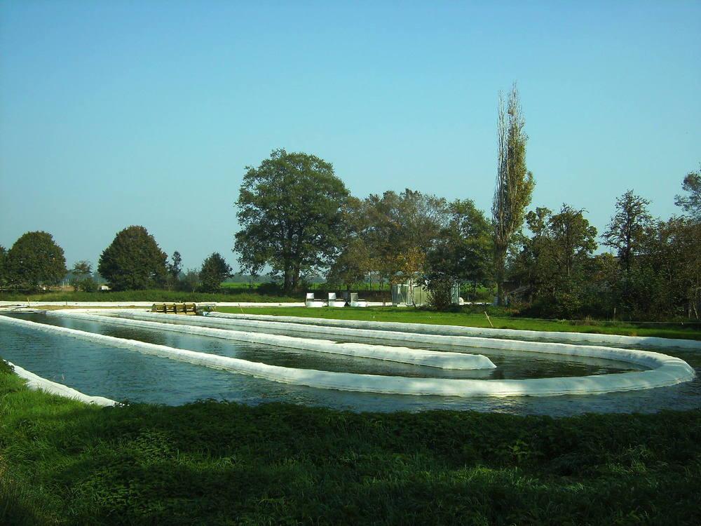 A raceway pond used to cultivate microalgae (JanB46, en.wikipedia.org).