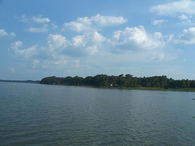 Lake Harris, Florida. Credit: Ebyabe, wikimedia.org