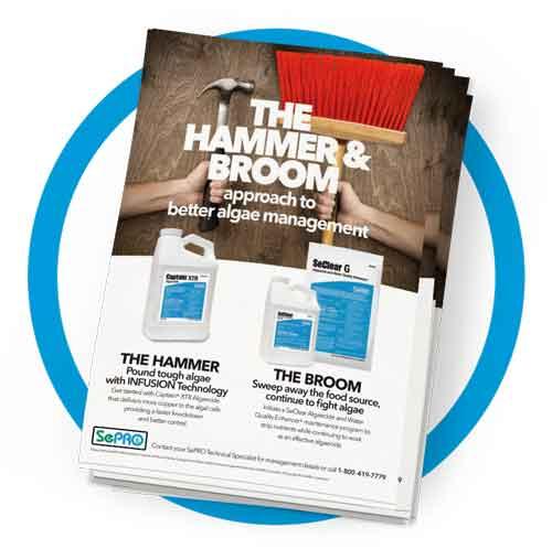 Hammer & Broom Info Sheet