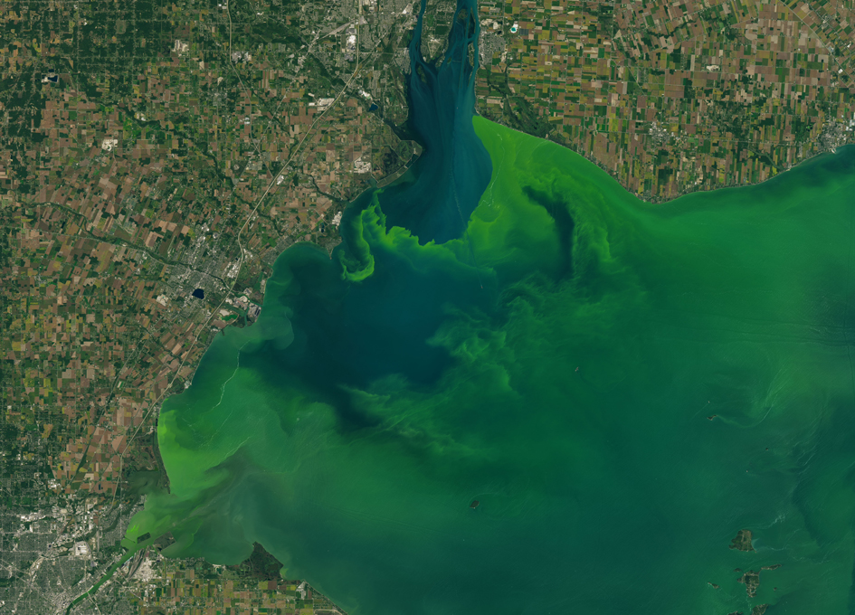 This Landsat 8 image from September 26, 2017, shows a large expanse of the algal bloom in Lake Erie. In late September, the bloom covered more than 700 square miles. Image Credit:  spaceref.com