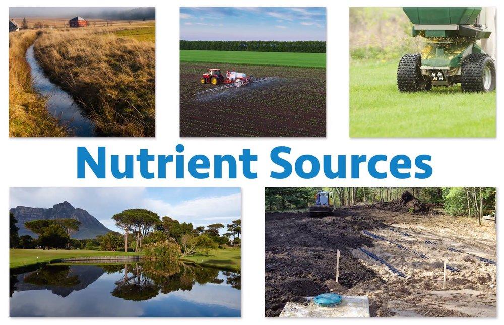 nutrient-sources.JPG