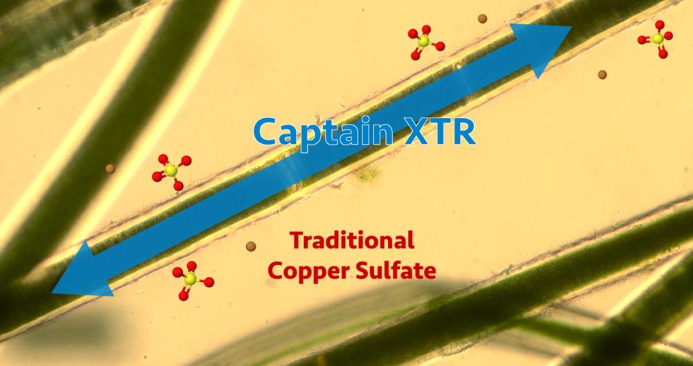 captain-xtr-vs-copper-sulfate.PNG