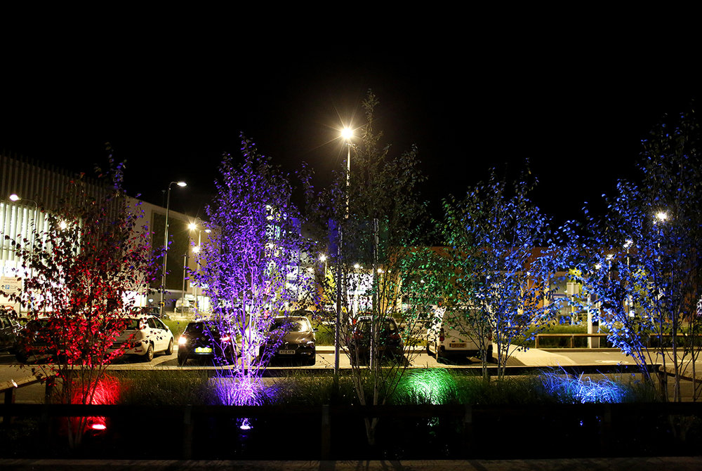 Longbridge Public Art Project - 'Star Map' and Urban Lighting Scheme for Longbridge Town Centre Development_4_web.jpg