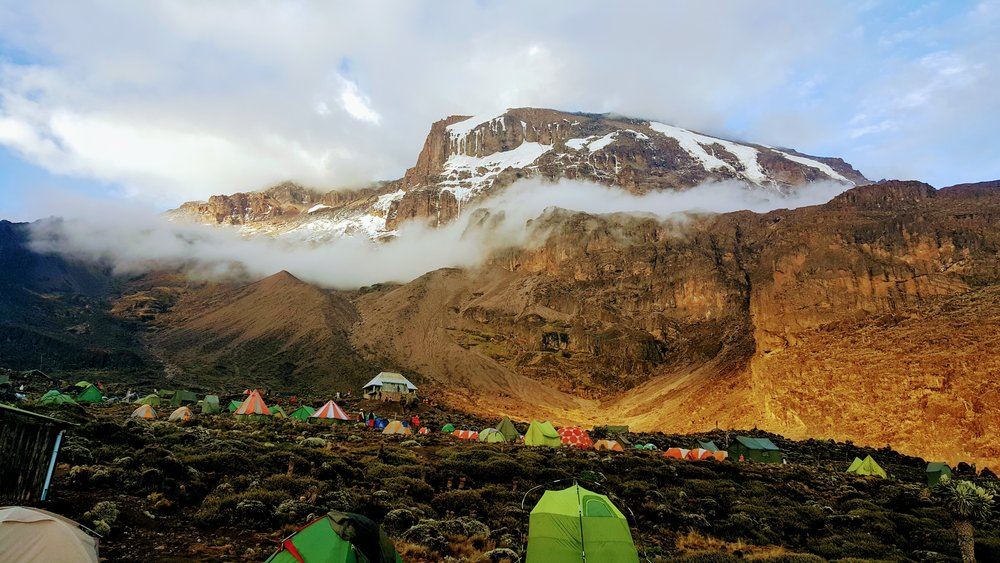 kilimanjaro-2412546.jpg
