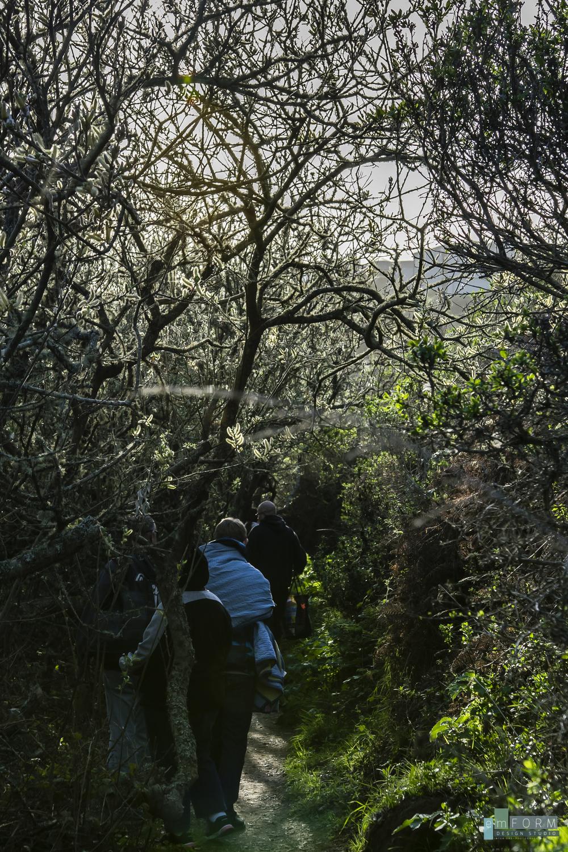 Pinnacle Gulch Hike-4.jpg