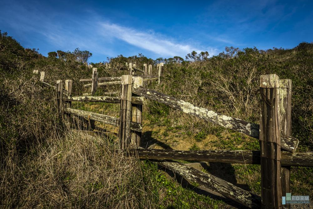 Pinnacle Gulch Hike-3.jpg