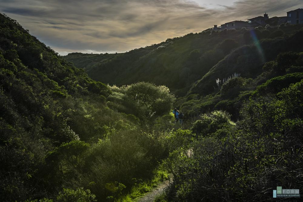 Pinnacle Gulch Hike-6.jpg