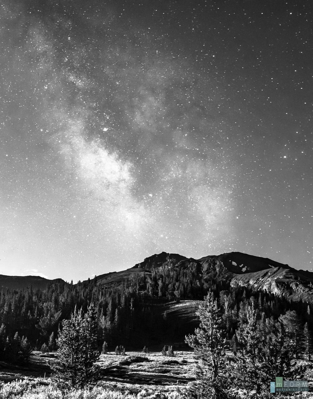 Moonlit & Milky-2.jpg