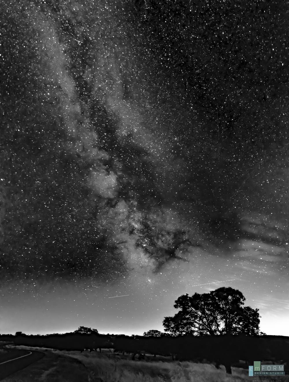 Tree to the Galaxy-1.jpg