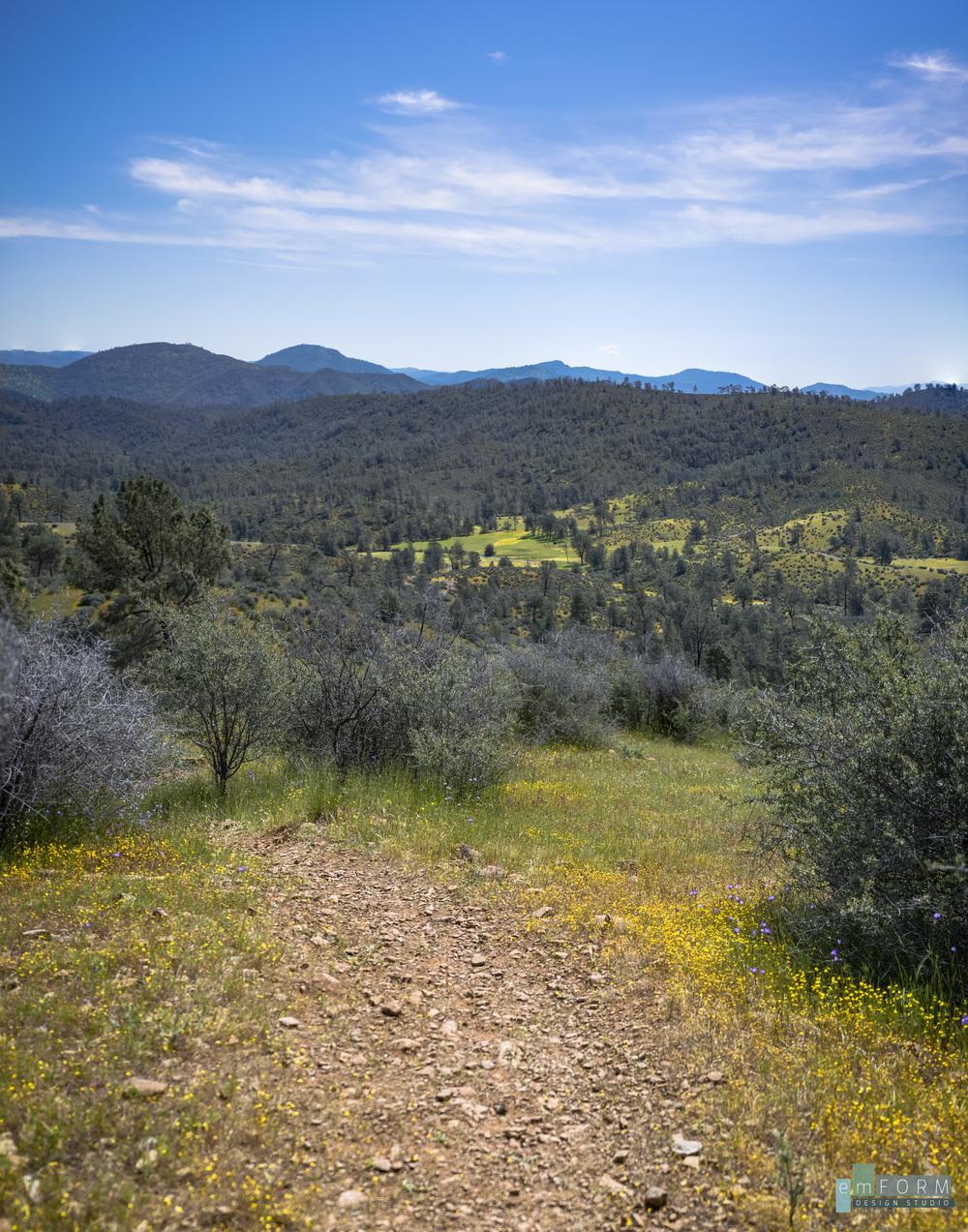 Red Hills Spring-1.jpg
