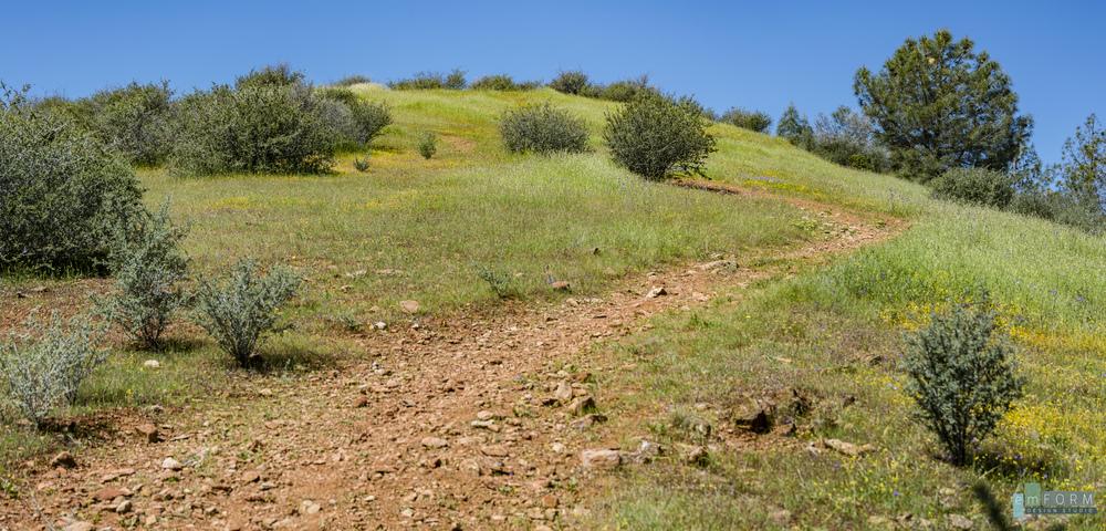 Red Hills Spring-4.jpg