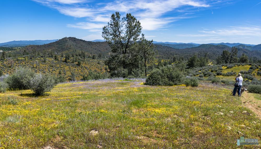 Red Hills Spring-6.jpg