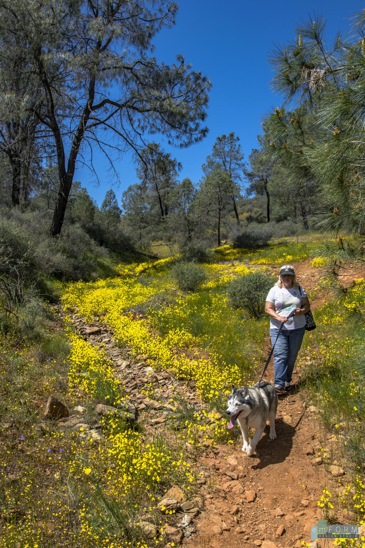 Red Hills Spring-15.jpg