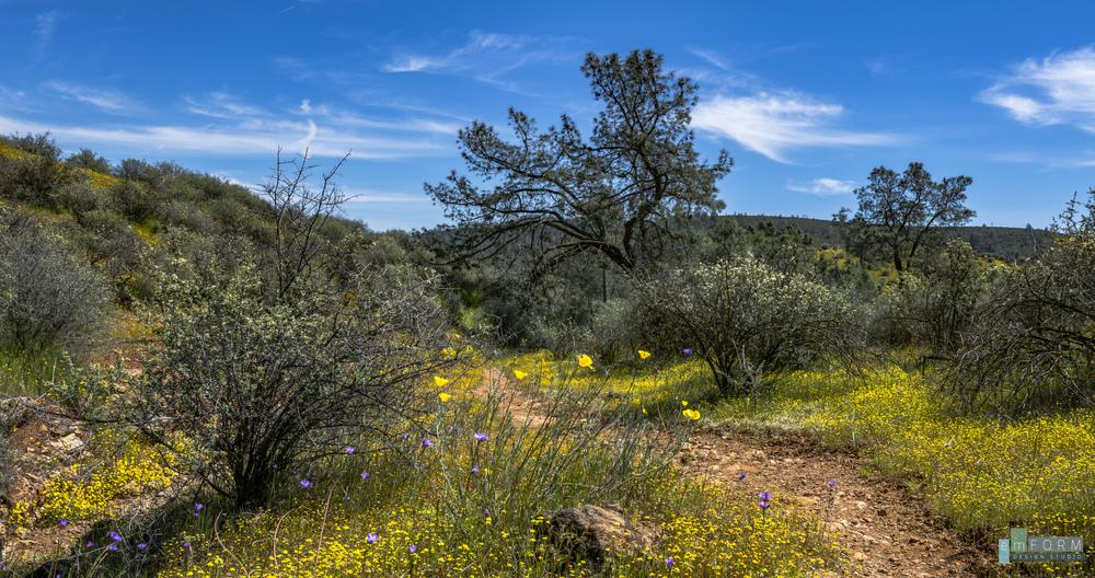 Red Hills Spring-16.jpg