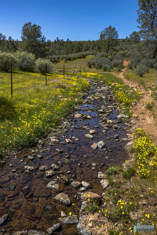 Red Hills Spring-19.jpg