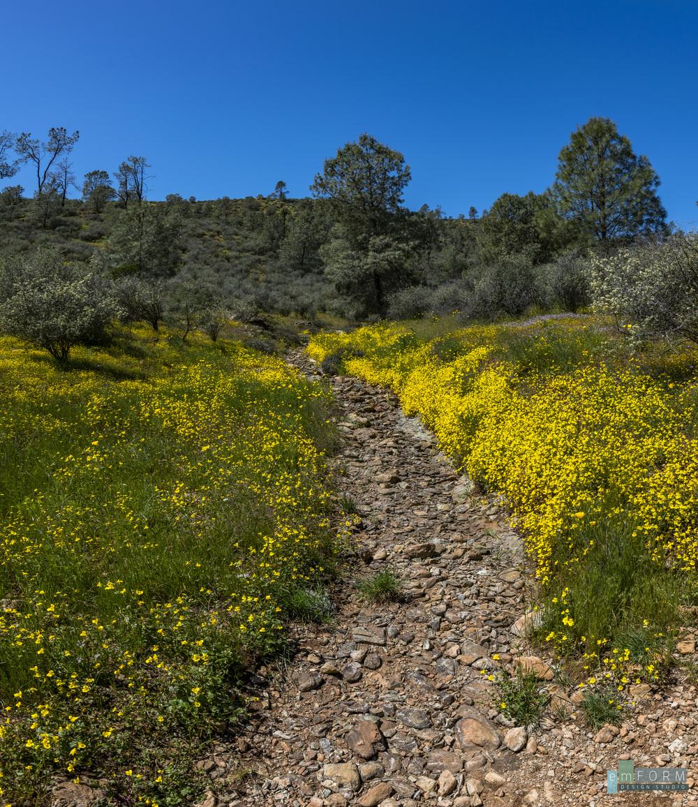 Red Hills Spring-21.jpg