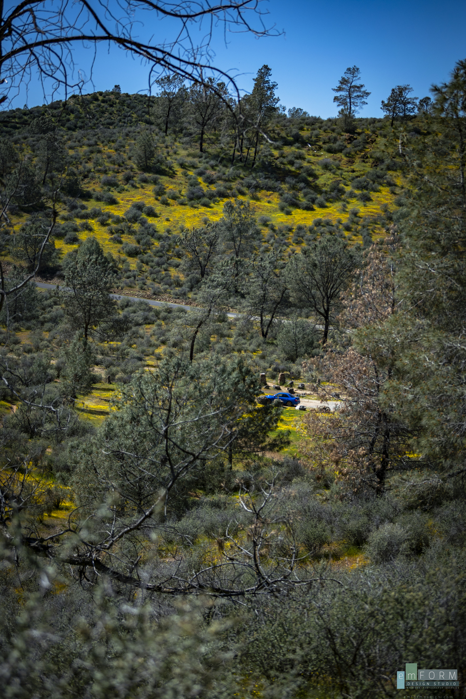 Red Hills Spring-23.jpg