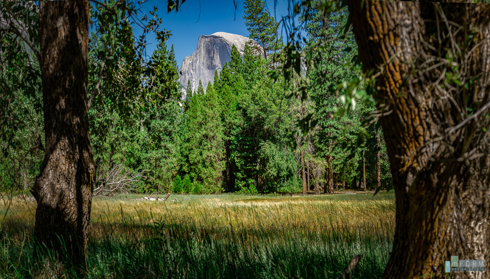 Half Dome towers over the thick woods and open meadows of Yosemite valley.  Three shot panorama -ISO 100 - F8 - 1/125 -50mm