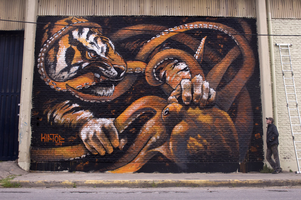 """Tigre vs Pulpo"""
