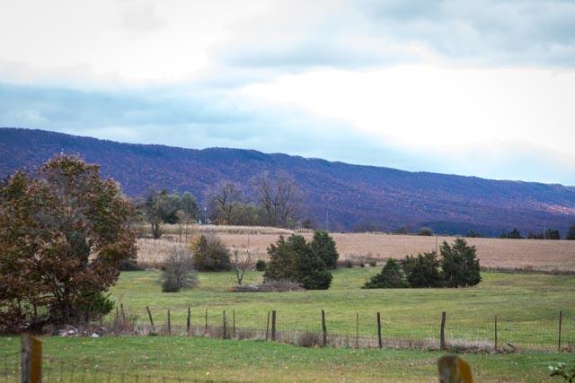 15238 N Valley Pike-47.jpg