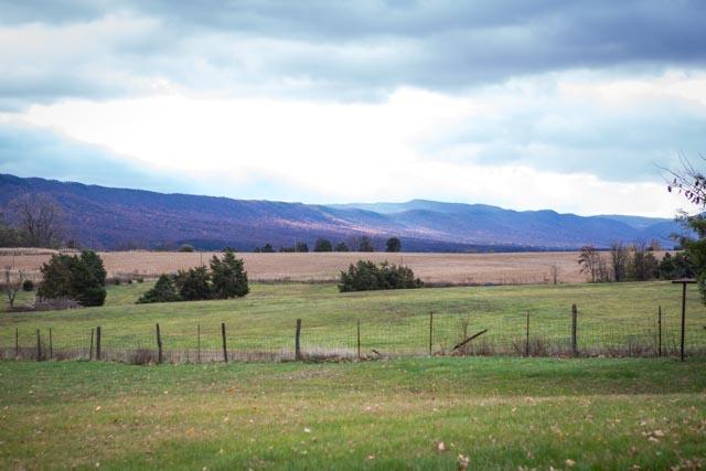 15238 N Valley Pike-48.jpg