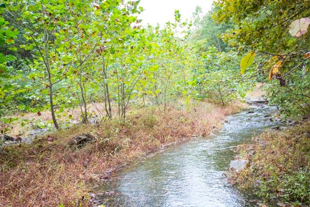 23359 German River Rd-30.jpg
