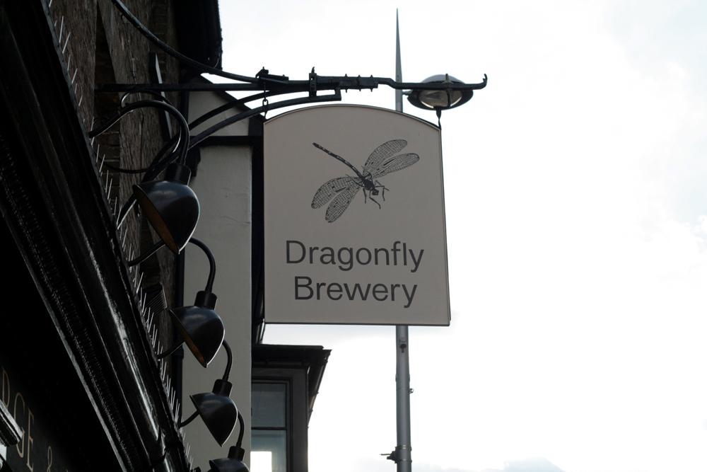 dragonfly+4.jpg