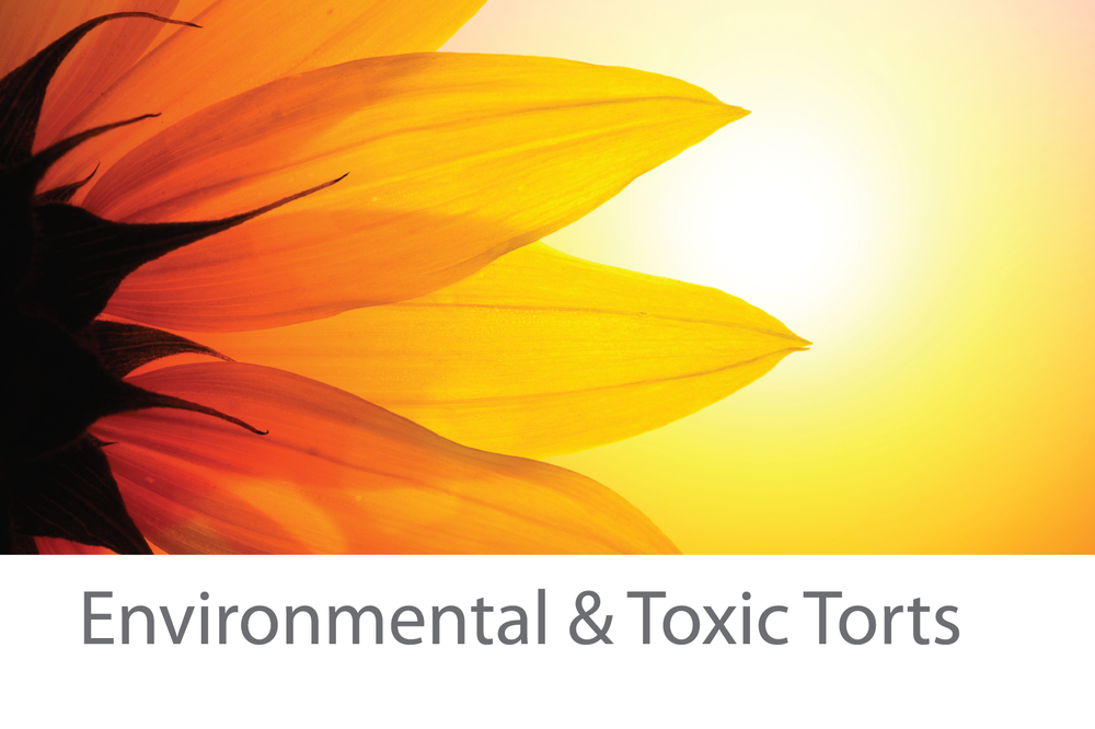 Environmental-Toxic-Torts-with-title.png