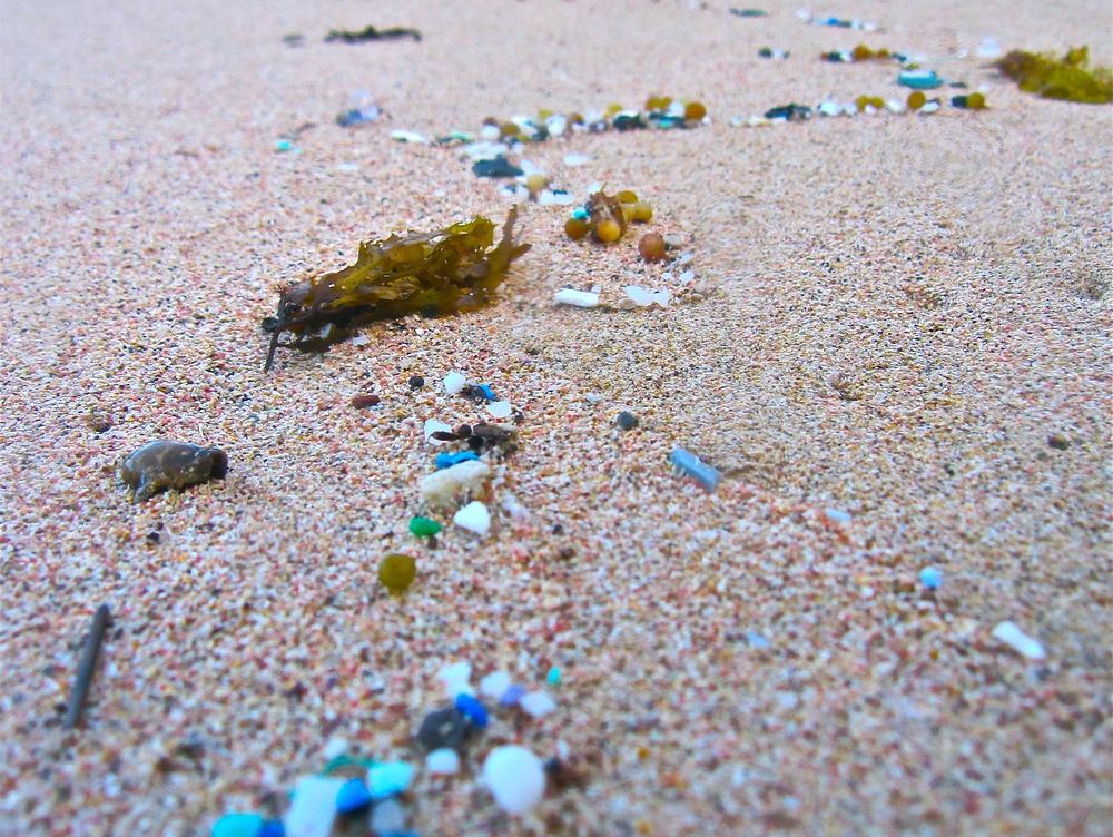 microplastic-beach-5-Gyres