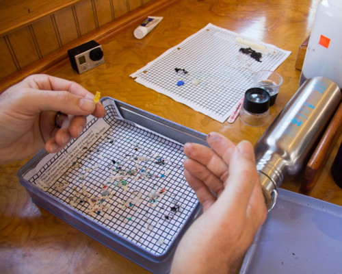 Labeling microplastics on ourSea Change Expedition