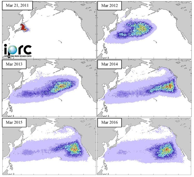 2011 Tsunami debris movement mapping. Credit: International Pacific Research Center