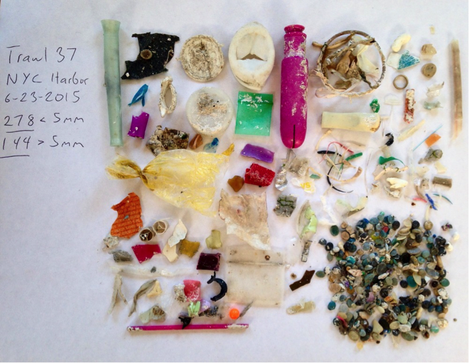 A SAMPLE FROM THE HUDSON RIVER COLLECTED ON OUR 2015 SEA CHANGE EXPEDITION