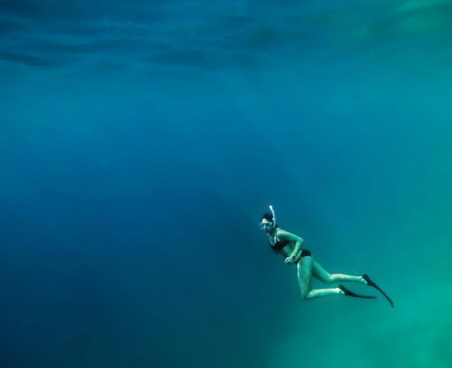 Tauch' ins Leben ein: Trennung gibt es nicht.     Foto: Finn Gross Maurer / Unsplash