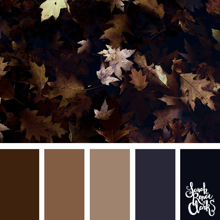 Color-palette-145-autumn.jpg
