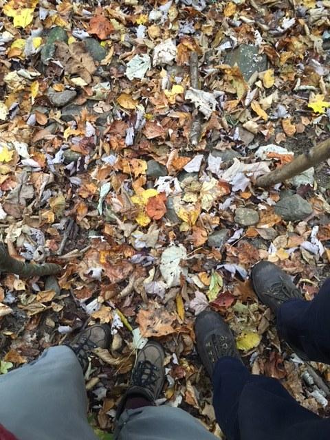 Asheville hike 1.JPG