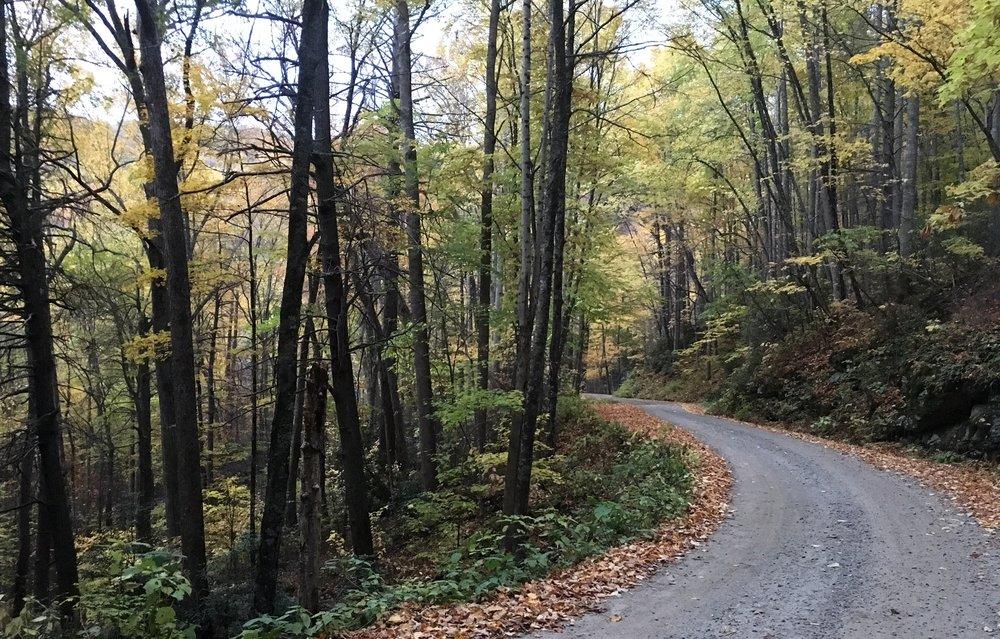 Asheville hike 10.JPG