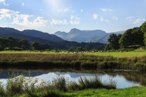 Looking Across To The Langdales From Elterwater. The Lake District