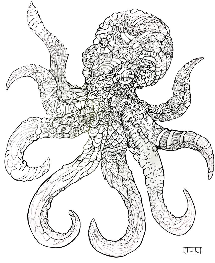 NISM_Octopus.jpg