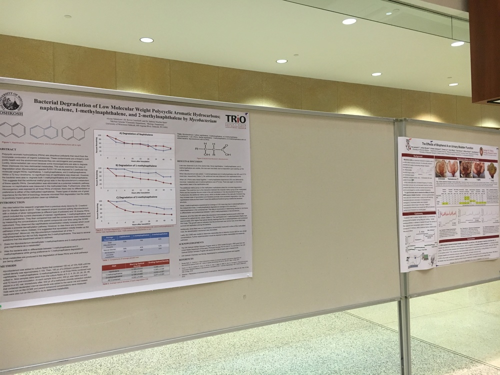 Two of the research posters that were submitted for the poster contest this year.