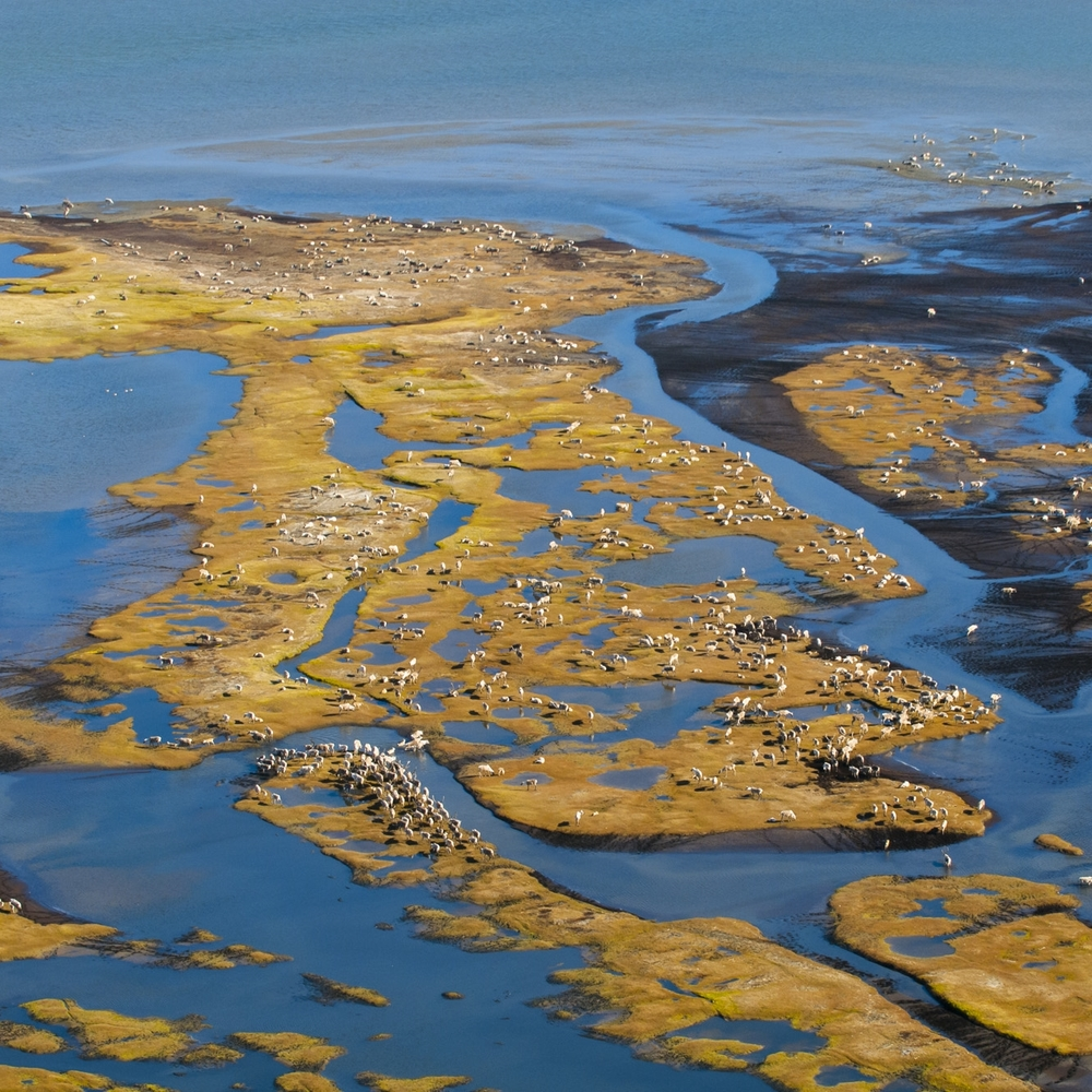 Braided River inspires action to protect the wild places in North America