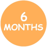 6 Months Forms