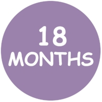18 Months Forms