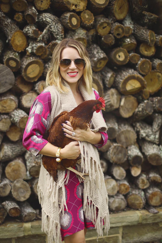 marie oliver dress 1.jpg