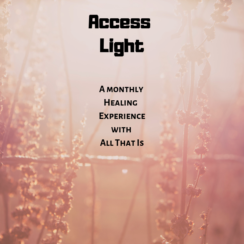 Access Light (1).png