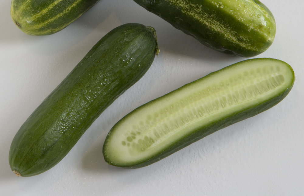 Persian (Mini) Cucumbers