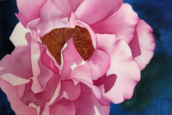 rose-violet.jpg
