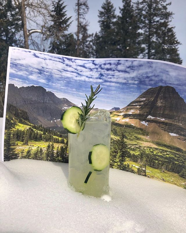 Fake it til you make it... It's summer now, see? So our summer favorite, The Farmer's Daughter, is on sale for $4 at the distillery all this week! . . . Farmers Daughter: 1.5 oz. Whistling Andy Cucumber Gin 4-5 oz. Rosemary Lemonade