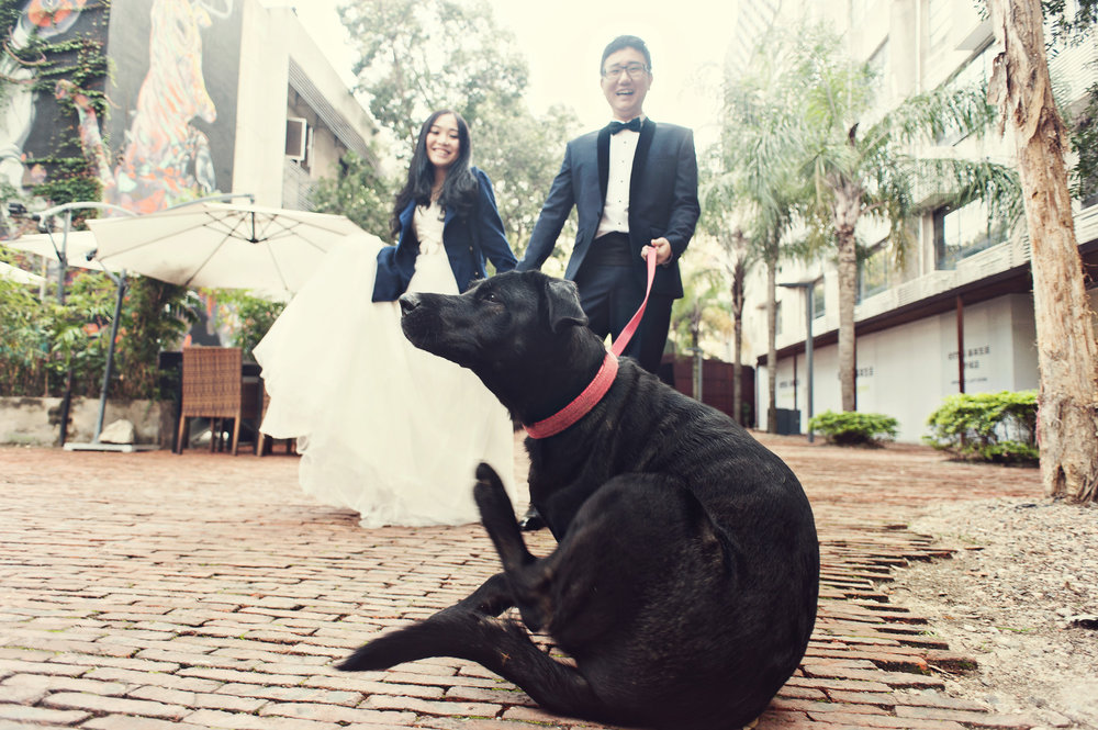 Chris_Hui_婚禮_婚紗照_pre_wedding_photography_best_131_.jpg